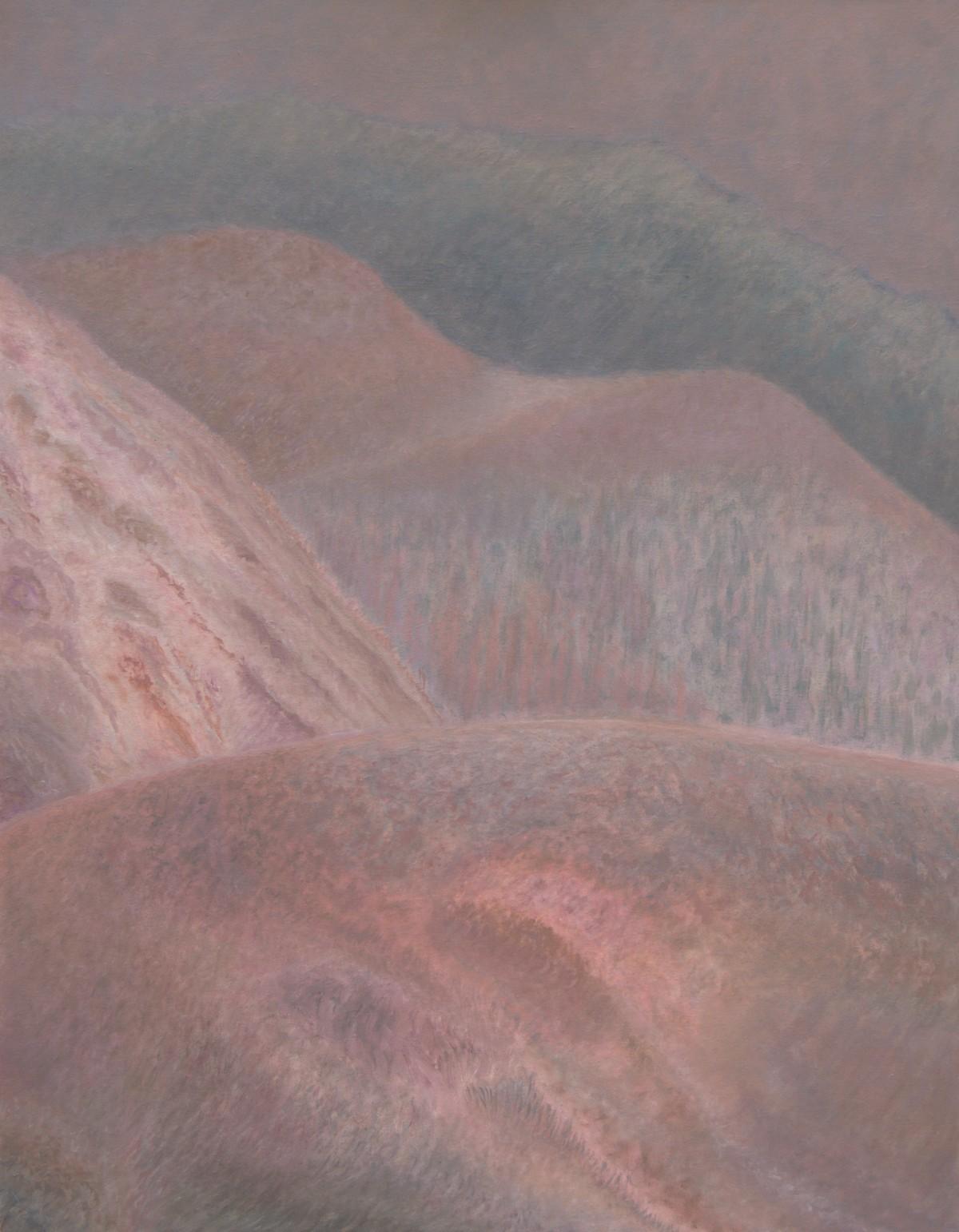 9 (oil on canvas, 70x90 cm), 2008-16