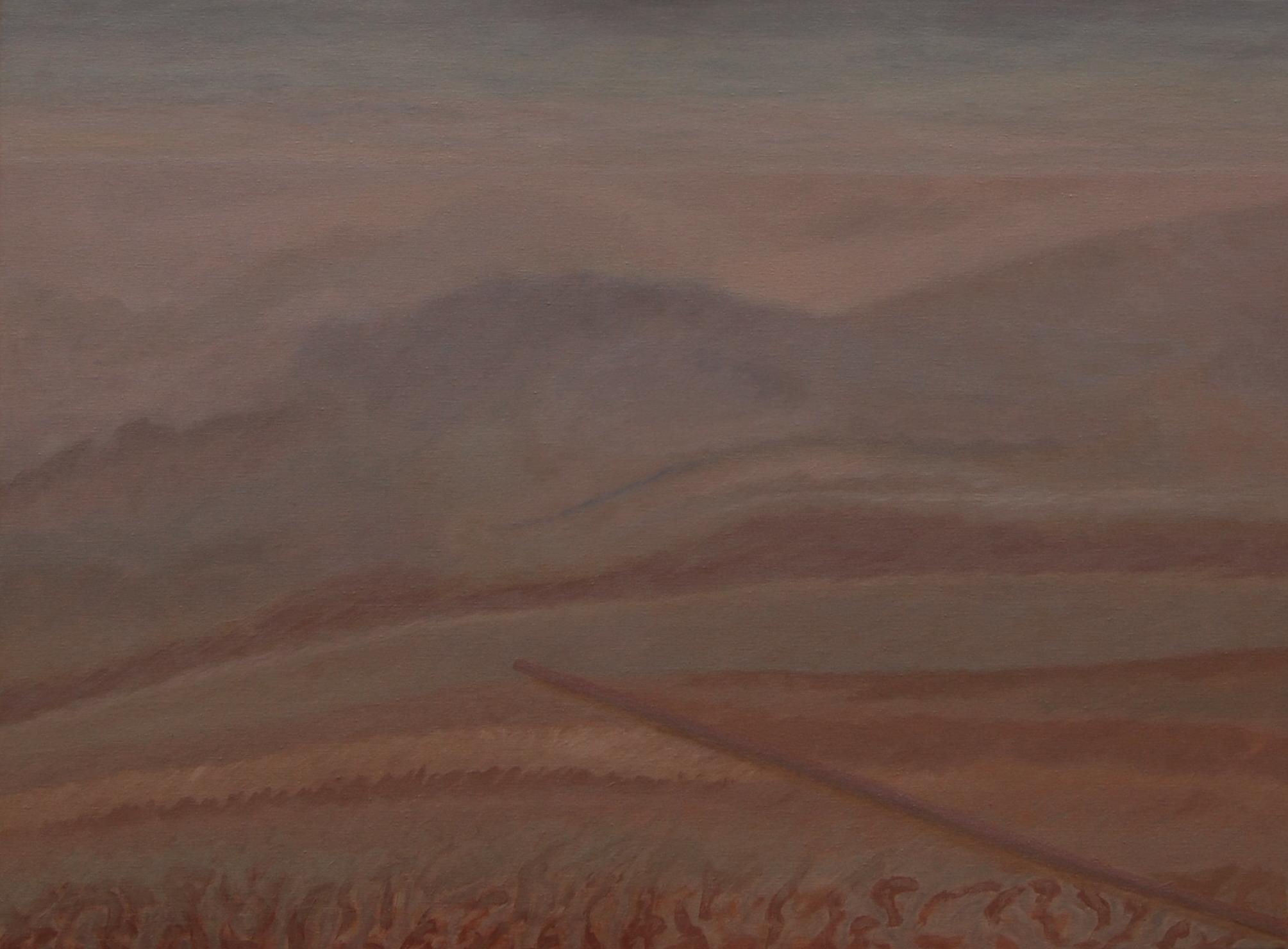 12 (akril, olaj, vászon, 80x60 cm), 2015-16