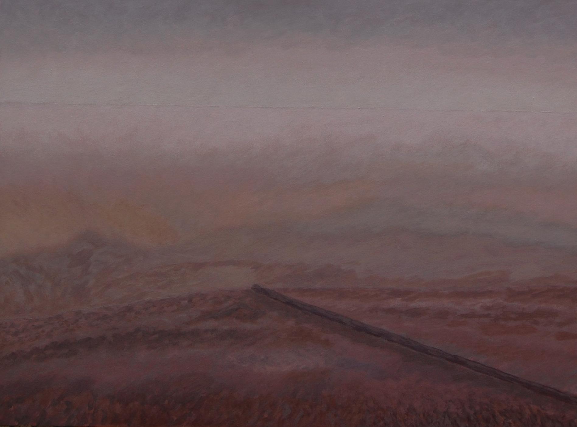9 (acrylic, oil on canvas, 80x60 cm), 2014