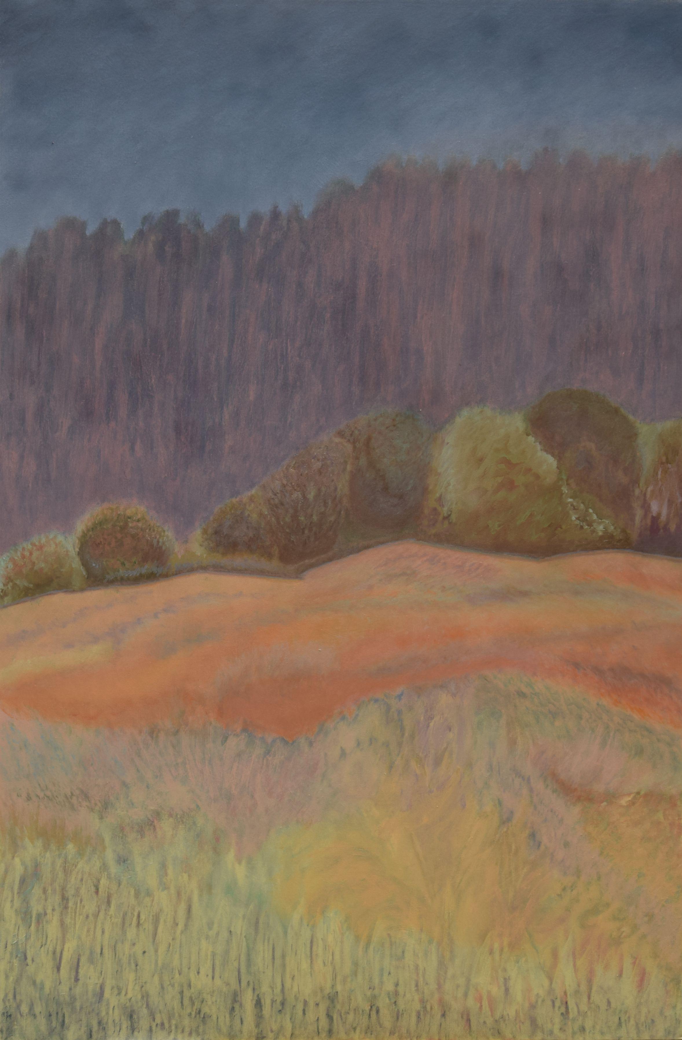 (80x120 cm, oil, acrylic on canvas), 2011-17